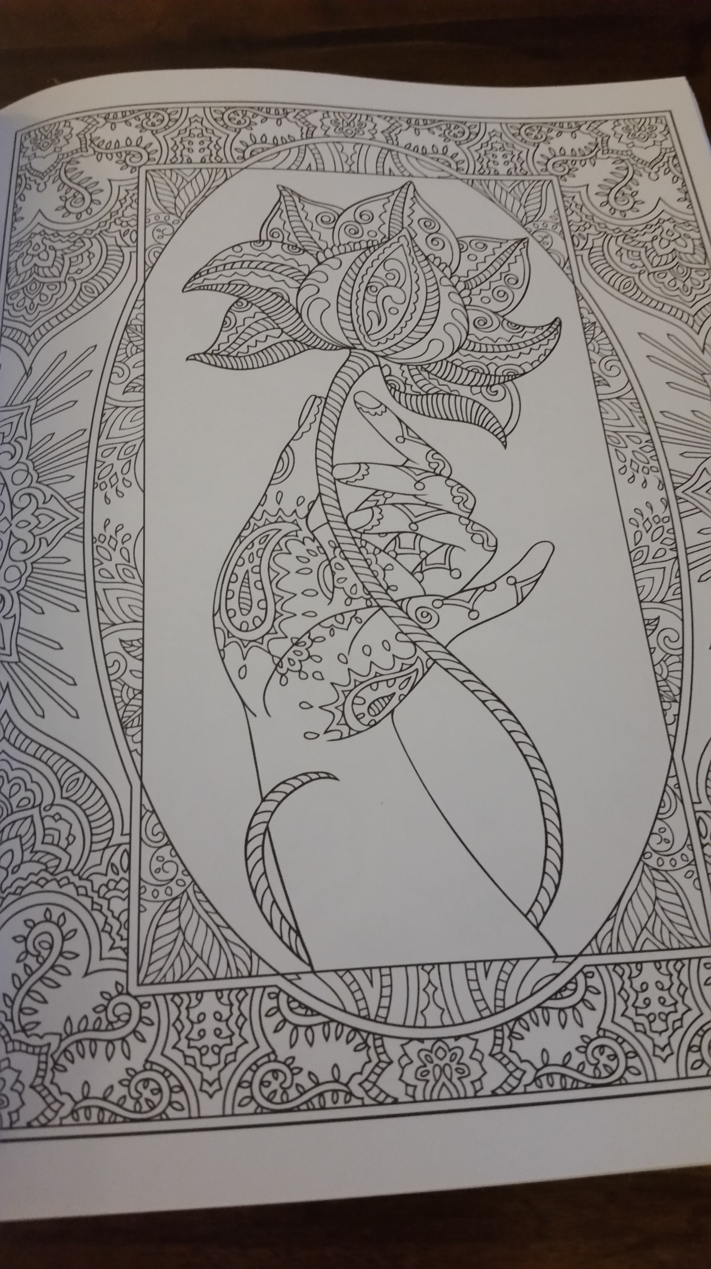 The secret garden coloring book barnes and noble - 20150904_191759 20150904_191816